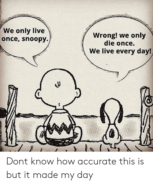 Snoopy: We only live  once, snoopy.)  Wrong! we only  die once.  We live every day! Dont know how accurate this is but it made my day