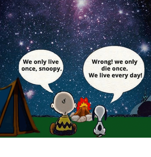 Snoopy: We only live  once, snoopy.  Wrong! we only  die once.  We live every day! You live every day.