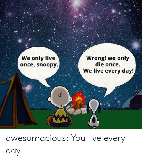 Snoopy: We only live  once, snoopy.  Wrong! we only  die once.  We live every day! awesomacious:  You live every day.