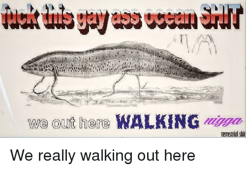 walking out: we out here WALKING ma  terrestrial shit We really walking out here