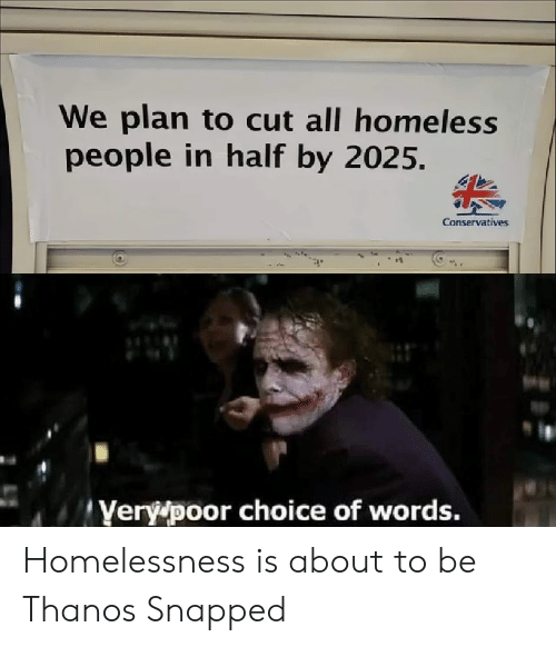 Conservatives: We plan to cut all homeless  people in half by 2025.  Conservatives  Yery poor choice of words. Homelessness is about to be Thanos Snapped