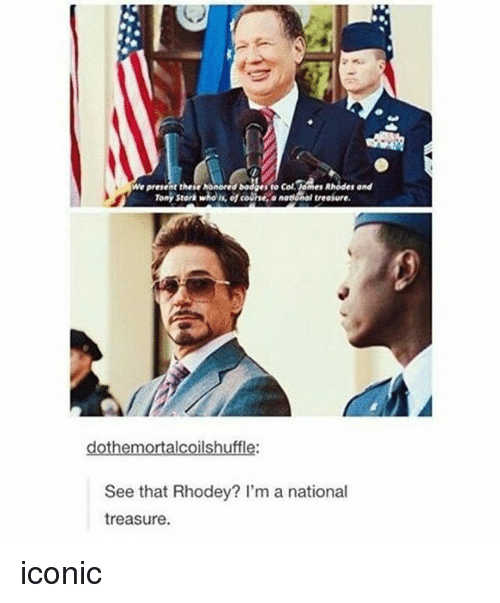Memes, Dodge, and Iconic: We present these honored Dodge to Col.lemes Rhodes and  Tony stark who efcoChe an  treaiure.  dot hemortalcoilshuffle:  See that Rhodey? I'm a national  treasure. iconic