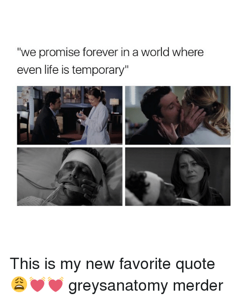 """Memes, Forever, and 🤖: """"we promise forever in a world where  even life is temporary"""" This is my new favorite quote 😩💓💓 greysanatomy merder"""
