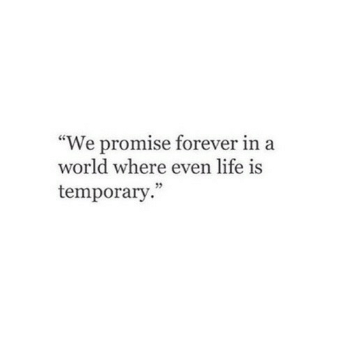 """In A World: """"We promise forever in a  world where even life is  temporary."""""""