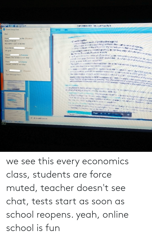 economics: we see this every economics class, students are force muted, teacher doesn't see chat, tests start as soon as school reopens. yeah, online school is fun