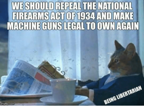 Guns, Memes, and Libertarian: WE SHOULD REPEAL THE NATIONAL  FIREARMS ACT OF1934 AND MAKE  MACHINE GUNS LEGAL TO OWNAGAIN  BEING LIBERTARIAN