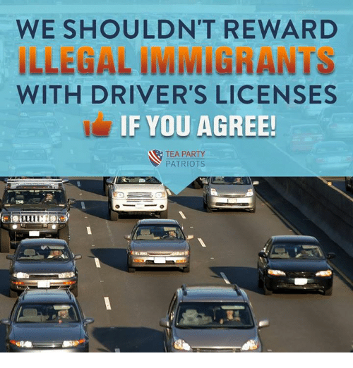 Memes, Party, and Patriotic: WE SHOULDN'T REWARD  ILLEGAL IMMIGRANTS  WITH DRIVER'S LICENSES  IF YOU AGREE!  TEA PARTY  PATRIOTS