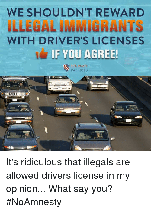 should illegal immigrants be allowed to get drivers licenses Immigrants in the country illegally have not been allowed to apply for a  road safety because licensed drivers must be tested and insured.
