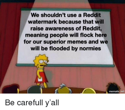 watermark: We shouldn't use a Reddit  watermark because that will  raise awareness of Reddit,  meaning people will flock here  for our superior memes and we  will be flooded by normies  mematic.net Be carefull y'all