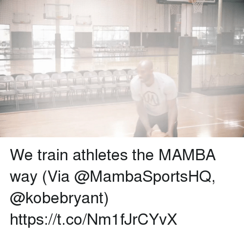 mamba: We train athletes the MAMBA way  (Via @MambaSportsHQ, @kobebryant)    https://t.co/Nm1fJrCYvX