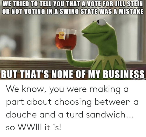 Thats None Of My Business: WE TRIED TO TELL YOU THAT A VOTE FOR JILL STEIN  OR NOT VOTING IN A SWING STATE WAS A MISTAKE  BUT THAT'S NONE OF MY BUSINESS  maoe on gur We know, you were making a part about choosing between a douche and a turd sandwich... so WWIII it is!