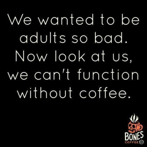 Without Coffee: We wanted to be  adults so bad.  Now look at us,  we can't function  without coffee.  BONES  COFFEE