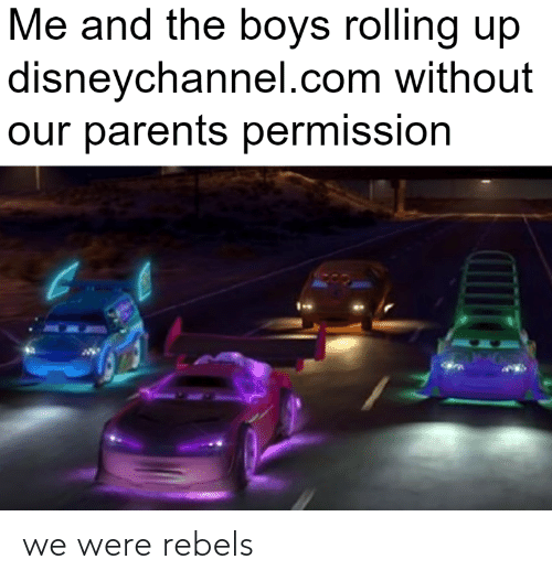 rebels: we were rebels
