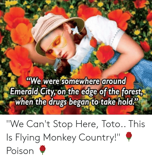 """flying monkey: """"We were somewhere around  Emerald City-on the edge ofthe forest  when the drugs began to take hold2  09 """"We Can't Stop Here, Toto.. This Is Flying Monkey Country!""""  🌹 Poison 🌹"""