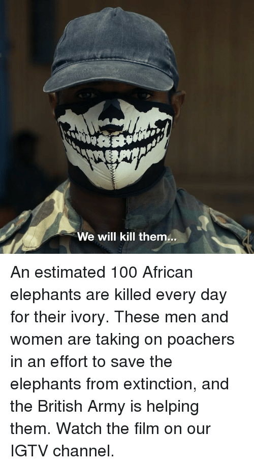 Anaconda, Memes, and Army: We will kill them... An estimated 100 African elephants are killed every day for their ivory. These men and women are taking on poachers in an effort to save the elephants from extinction, and the British Army is helping them. Watch the film on our IGTV channel.