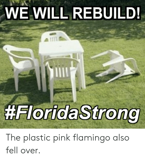We Will Rebuild: WE WILL REBUILD!  The plastic pink flamingo also fell over.