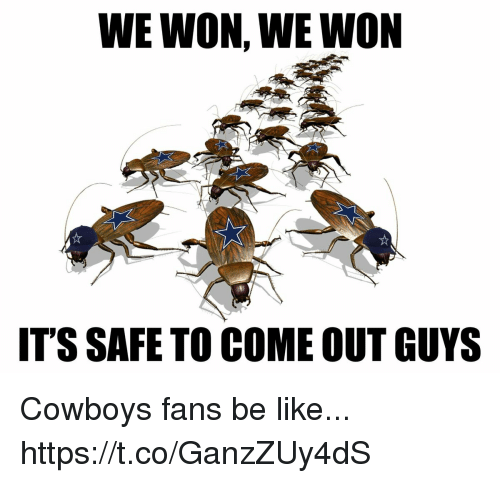 Be Like, Dallas Cowboys, and Football: WE WON, WE WON  IT'S SAFE TO COME OUT GUYS Cowboys fans be like... https://t.co/GanzZUy4dS