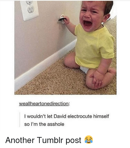 tumblr post: weallheartonedirection:  I wouldn't let David electrocute himself  so I'm the asshole Another Tumblr post 😂