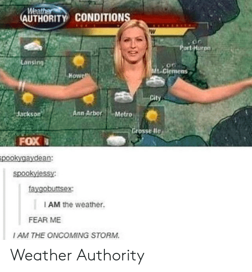 ort: Weat  AUTHORITY CONDITION  ort Hurpn  Lansing  t-Clemens  Howe  Jackson  nn ArborMetro  rosse dle  FOX  pookygaydean:  faygobuttsex  I AM the weather.  FEAR ME  I AM THE ONCOMING STORM Weather Authority