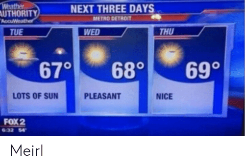 Detroit: Weather  AUTHORITY  AccuWeather  NEXT THREE DAYS  METRO DETROIT  THU  WED  TUE  690  670  680  LOTS OF SUN  PLEASANT  NICE  FOX 2  6.32 54 Meirl
