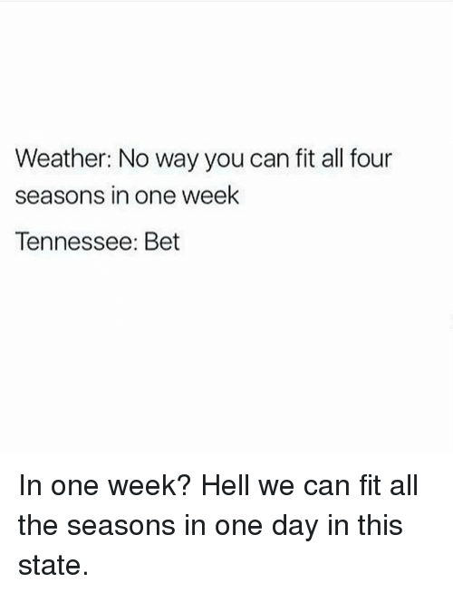 weather no way you can fit all four seasons in 9683836 weather no way you can fit all four seasons in one week tennessee
