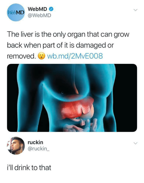 webMD: WebMD  WebMD@WebMD  The liver is the only organ that can grow  back when part of it is damaged or  removed. wb.md/2MvE008  ruckin  @ruckin  i'll drink to that