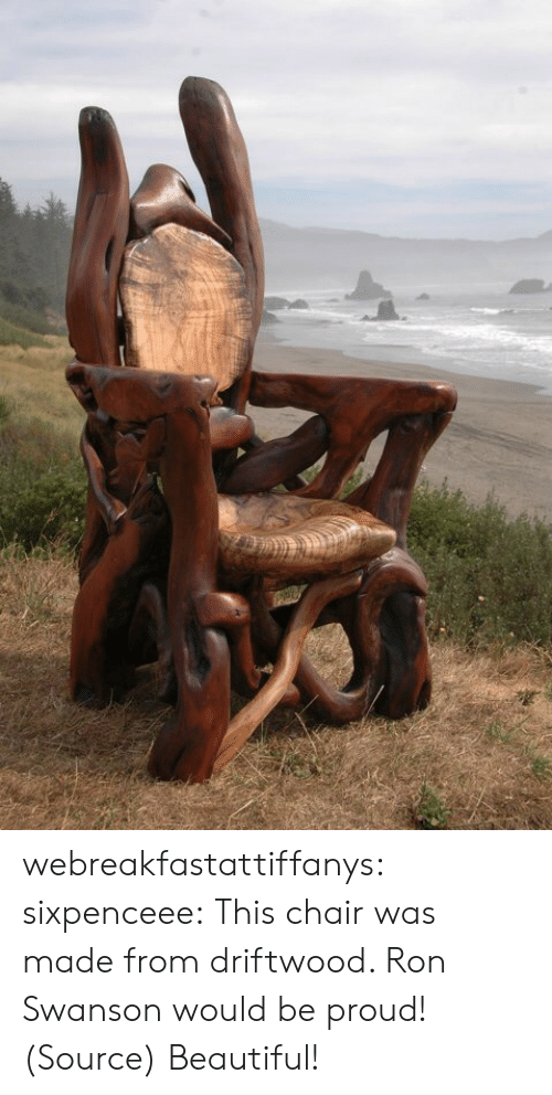 driftwood: webreakfastattiffanys: sixpenceee:  This chair was made from driftwood. Ron Swanson would be proud! (Source)  Beautiful!