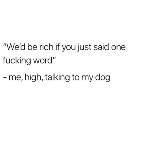 """Fucking, Word, and Dog: """"We'd be rich if you just said one  fucking word""""  - me, high, talking to my dog"""