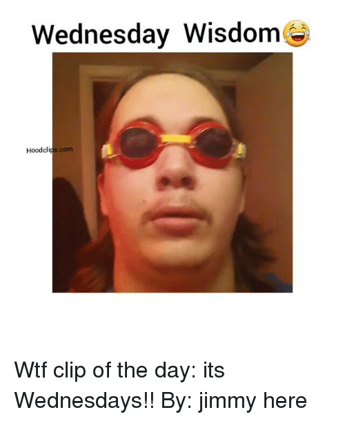 Funny, Wtf, and Wednesday: Wednesday Wisdom  Hood clips.com Wtf clip of the day: its Wednesdays!! By: jimmy here