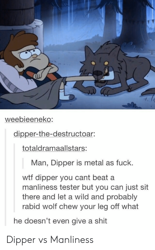 dipper: weebieeneko  dipper-the-destructoar:  totaldramaallstars:  Man, Dipper is metal as fuck.  wtf dipper you cant beat a  manliness tester but you can just sit  there and let a wild and probably  rabid wolf chew your leg off what  he doesn't even give a shit Dipper vs Manliness