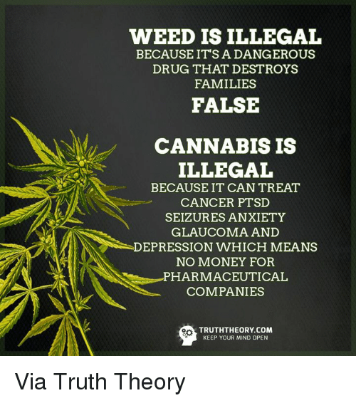 Illegalize: WEED IS ILLEGAL  BECAUSE ITS A DANGEROUS  DRUG THAT DESTROYS  FAMILIES  FALSE  CANNABIS IS  ILLEGAL  BECAUSE IT CAN TREAT  CANCER PTSD  SEIZURES ANXIETY  GLAUCOMA AND  DEPRESSION WHICH MEANS  NO MONEY FOR  PHARMACEUTICAL  COMPANIES  TRUTHTHEORY COM  KEEP YOUR MIND OPEN Via Truth Theory