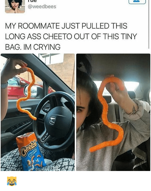 Crying, Memes, and Roommate: @weedbees  MY ROOMMATE JUST PULLED THIS  LONGASS CHEETO OUT OF THIS TINY  BAG. IM CRYING 😹