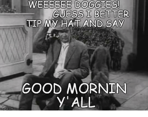 Memes, 🤖, and Y All: WEEEEEE DOGGIES!  GUESS I BETTER  TIP MY HAT AND SAY  GOOD MORNIN  y' ALL