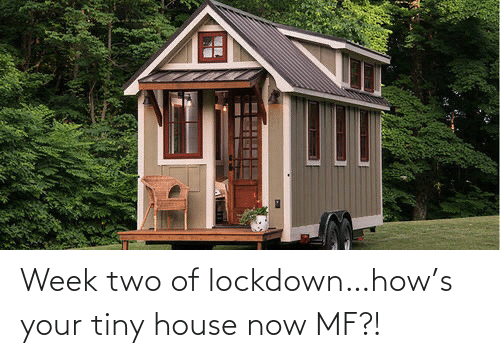 tiny house: Week two of lockdown…how's your tiny house now MF?!