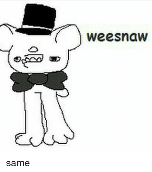 weesnaw %E4%B8%A5 same 867969 🔥 25 best memes about weesnaw weesnaw memes,Weesnaw Meme