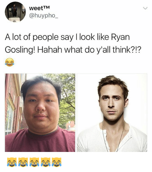 Memes, Ryan Gosling, and 🤖: WeetTM  @huypho  A lot of people say I look like Ryan  Gosling! Hahah what do y'all think?!?  ?1? 😹😹😹😹😹