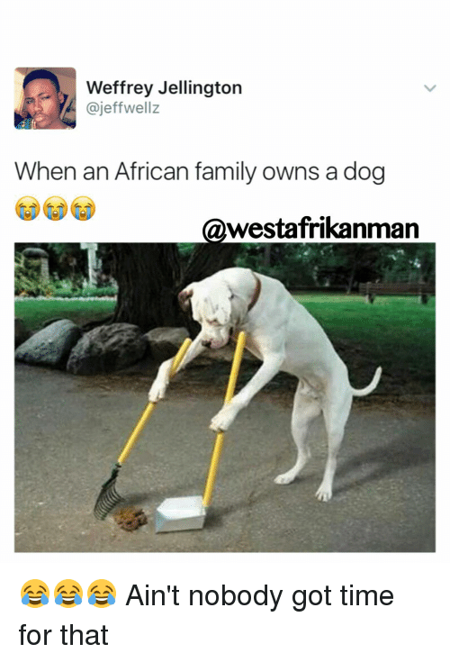 Memes, Ain't Nobody Got Time for That, and 🤖: Weffrey Jellington  ajeffwellz  When an African family owns a dog  @westafrikanman 😂😂😂 Ain't nobody got time for that