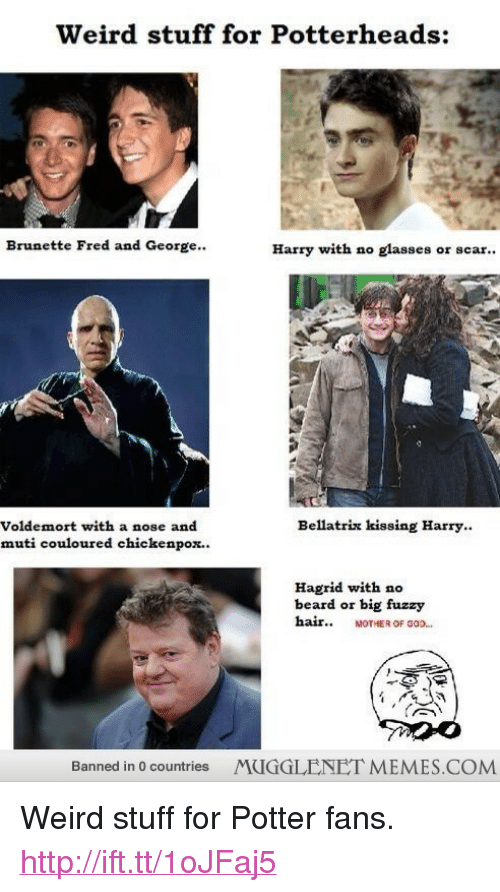 """chickenpox: Weird stuff for Potterheads:  Brunette Fred and George..  Harry with no glasses or scar..  Bellatrix kissing Harry.  Voldemort with a nose and  muti couloured chickenpox..  Hagrid with no  beard or big fuzzy  hair MOTHER OF 0O.  Banned in 0 countries MUGGLENET MEMES.COMM <p>Weird stuff for Potter fans. <a href=""""http://ift.tt/1oJFaj5"""">http://ift.tt/1oJFaj5</a></p>"""