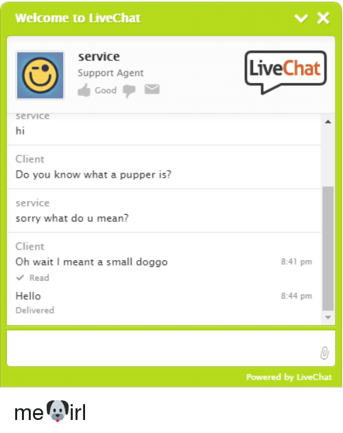what is chat support agent