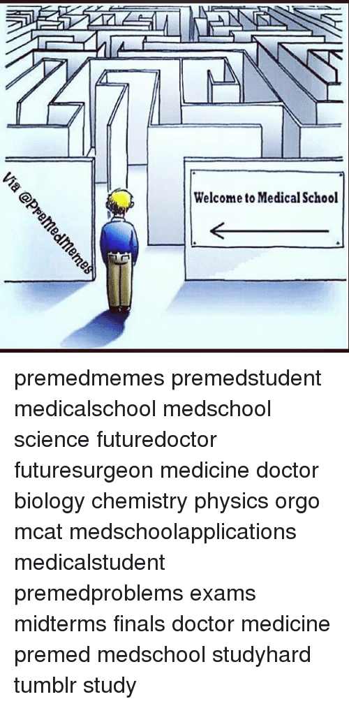welcome to medical school premedmemes premedstudent medicalschool medschool science futuredoctor 3349670 🔥 25 best memes about pre med, doctor, physical, and tumblr,Medical Memes Tumblr