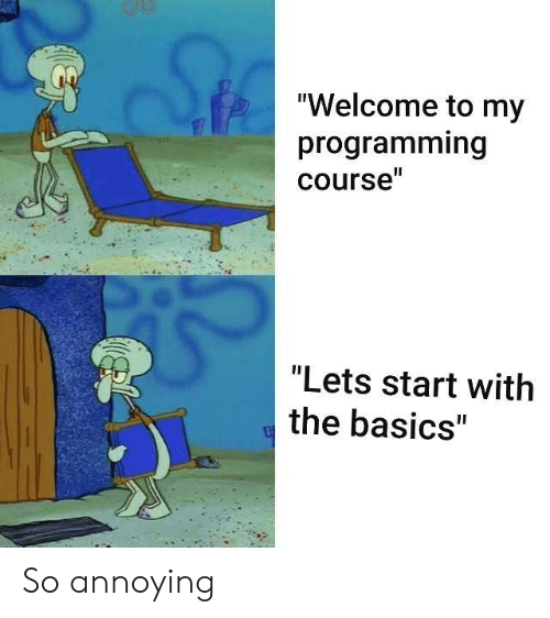 """So Annoying: """"Welcome to my  programming  course""""  """"Lets start with  the basics"""" So annoying"""