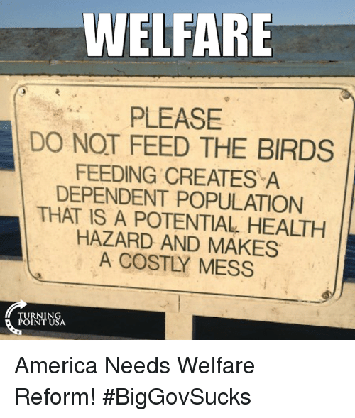 America, Memes, and Birds: WELFARE  PLEASE  DO NOT FEED THE BIRDS  FEEDING CREATES A  DEPENDENT POPULATION  THAT IS A POTENTIAL HEALTH  HAZARD AND MAKES  A COSTLY MESS  TURNING  POINT USA America Needs Welfare Reform! #BigGovSucks