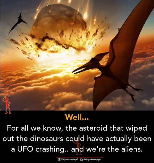 ufo: Well.  For all we know, the asteroid that wiped  out the dinosaurs could have actually been  a UFO crashing.. and we're the aliens.