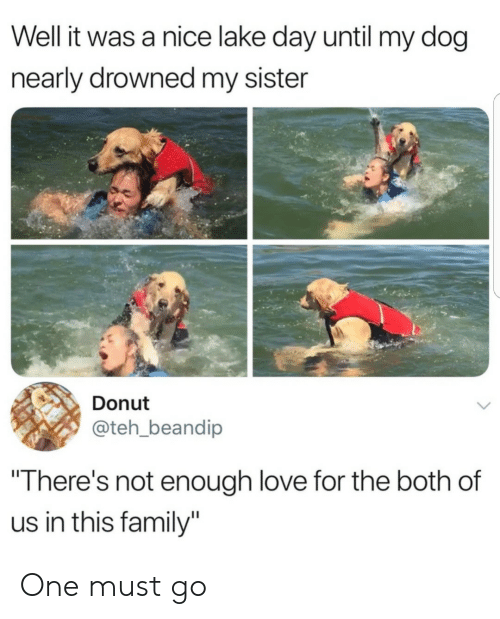 "Drowned: Well it was a nice lake day until my dog  nearly drowned my sister  Donut  @teh_beandip  ""There's not enough love for the both of  us in this family"" One must go"