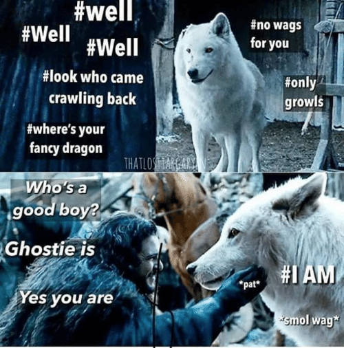 crawling:  #well,  #no wags  #Well #Well  for you  #look who came  #only  crawling back  growls  #where's your  fancy dragon  THATLOSA A  Who's a  good boy?  Ghostie is  pat AM  *pat*  Yes you are  smol wag*