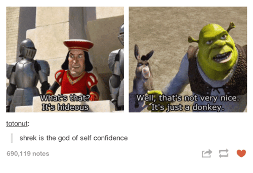 Hideousness: Well: that's not very nice.  Its hideous  It's just a donkey  totonut  shrek is the god of self confidence  690,119 notes