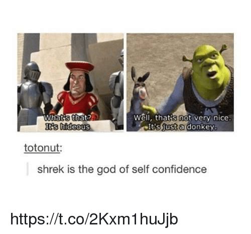 Nice: Well, thats not  very nice  Whats that  Its ust a donkey  hideous  totonut:  Shrek is the god of self confidence https://t.co/2Kxm1huJjb