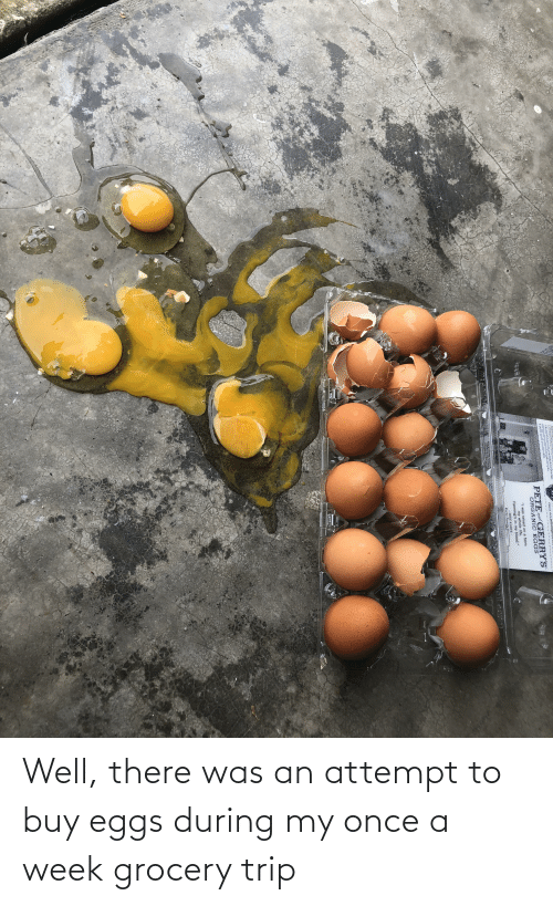 eggs: Well, there was an attempt to buy eggs during my once a week grocery trip