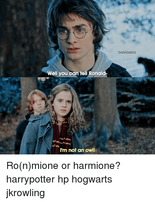 Memes, Wizards, and 🤖: Well you  can tell Ronald  I'm not an owl  THE WIZARDS Ro(n)mione or harmione? harrypotter hp hogwarts jkrowling