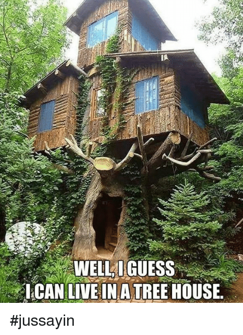 Dank, Guess, and House: WELLI GUESS  CAN LIVE INA TREE HOUSE. #jussayin